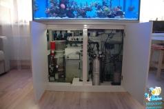 Морской аквариум на 600 литров (123х78х60 см). Тумба с оборудованием